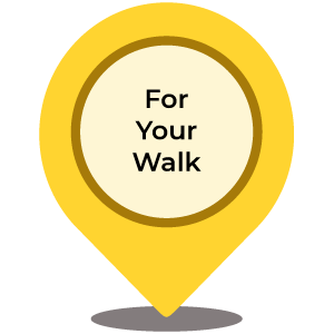 While You're Walking