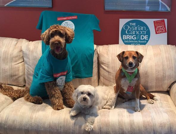 2020 Boston Marathon Jimmy Fund Walk Ovarian Cancer Brigade S Fundraising Page Boston Marathon Jimmy Fund Walk
